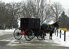 Winter Amish Buggy