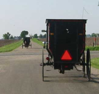 Amish Buggies outside of Arthur, Illinois