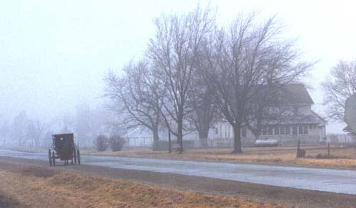 Foggy Morming in Illinois Amish Country